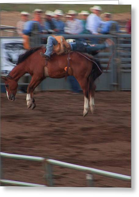 Hamels Photographs Greeting Cards - Bronc Riding Greeting Card by Cynthia Dickinson