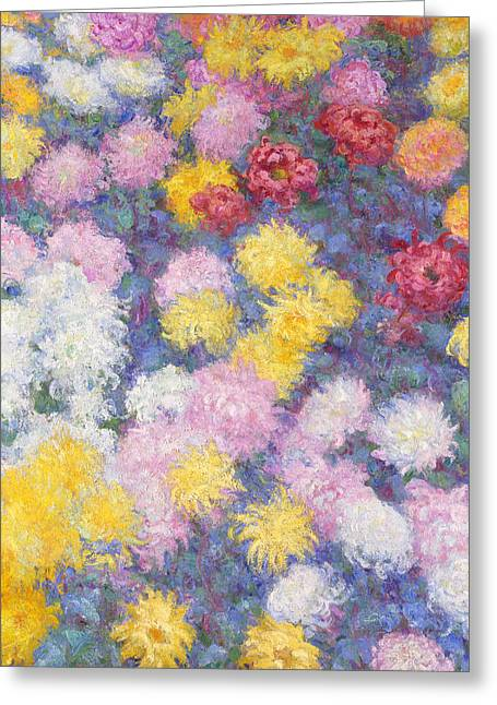In Bloom Greeting Cards - Chrysanthemums Greeting Card by Claude Monet