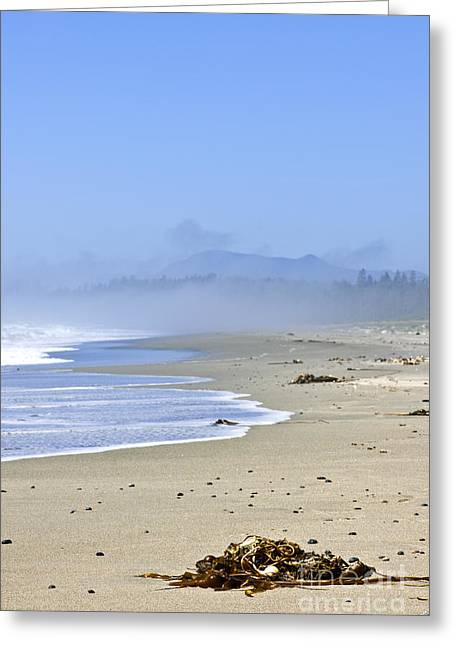 Foggy Beach Greeting Cards - Coast of Pacific ocean in Canada Greeting Card by Elena Elisseeva