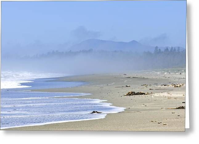 Coast of Pacific ocean in Canada Greeting Card by Elena Elisseeva