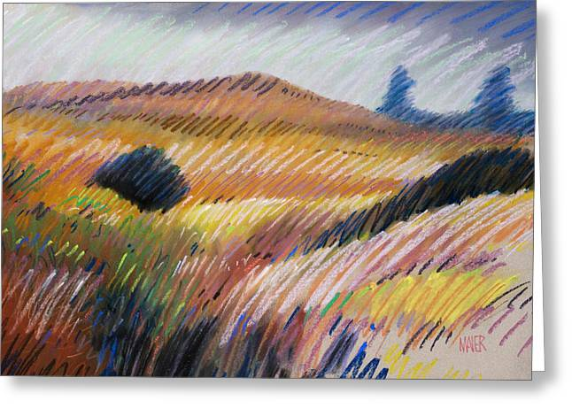 Hills Pastels Greeting Cards - Coastal Hills Greeting Card by Donald Maier