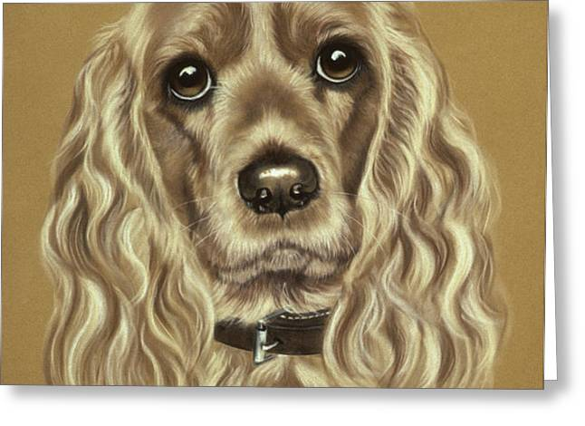 Cocker Spaniel Greeting Card by Patricia Ivy