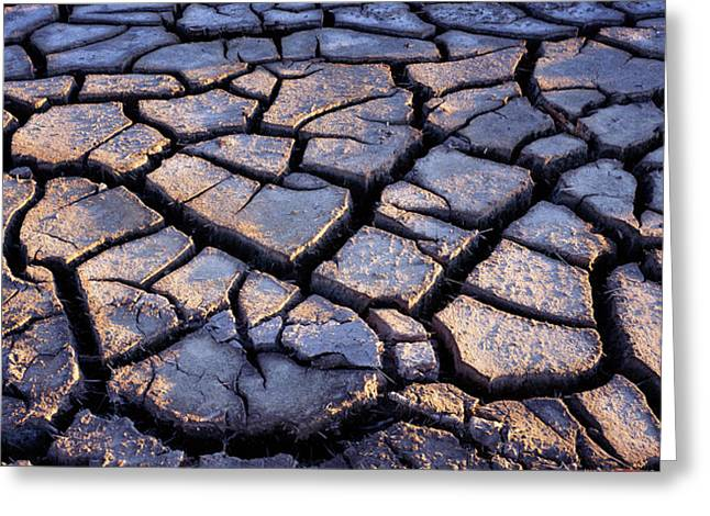 Fissure Greeting Cards - Cracked Earth Greeting Card by Kaj R. Svensson
