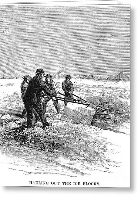 Cutting Ice, C1870 Greeting Card by Granger