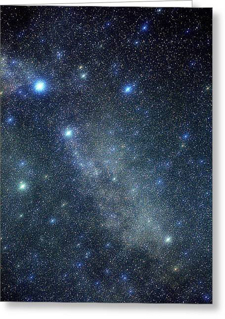 Constellations Photographs Greeting Cards - Cygnus Constellation Greeting Card by John Sanford