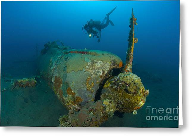 New Britain Greeting Cards - Diver Explores The Wreck Greeting Card by Steve Jones