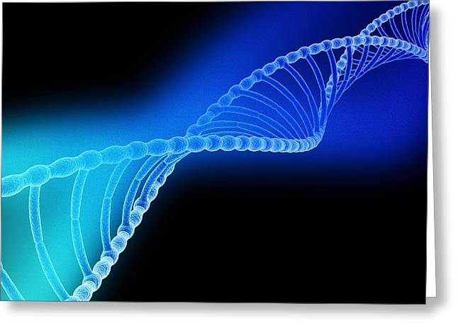 Helix Greeting Cards - Dna Helix Greeting Card by Pasieka