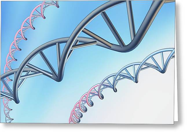 Helix Greeting Cards - Dna Molecules, Conceptual Artwork Greeting Card by Pasieka
