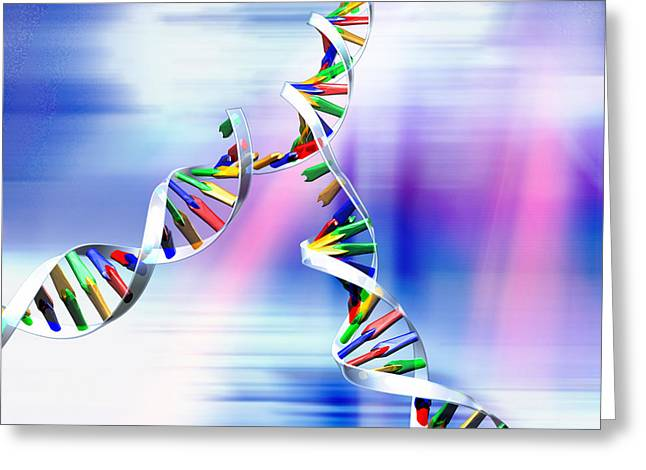 Copying Greeting Cards - Dna Replication Greeting Card by Pasieka