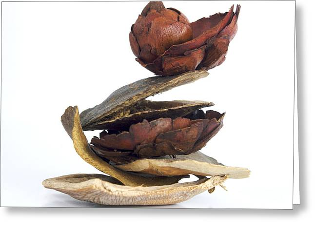 Sort Out Greeting Cards - Dried pieces of vegetables.  Greeting Card by Bernard Jaubert