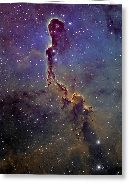 Deepsky Greeting Cards - Elephant Trunk Nebula Greeting Card by Andre Van der Hoeven