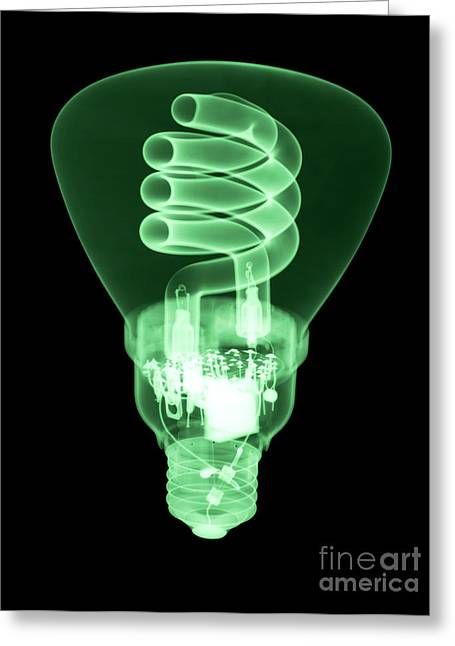 Energy Efficient Greeting Cards - Energy Efficient Light Bulb Greeting Card by Ted Kinsman