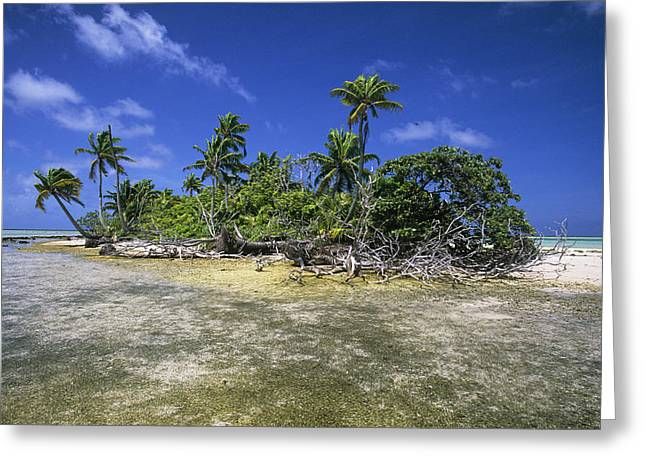 Uproot Greeting Cards - Fakarava Atoll Greeting Card by Alexis Rosenfeld