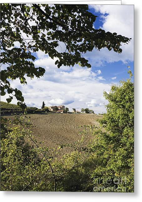Chianti Hills Photographs Greeting Cards - Farmhouse and Field Greeting Card by Jeremy Woodhouse