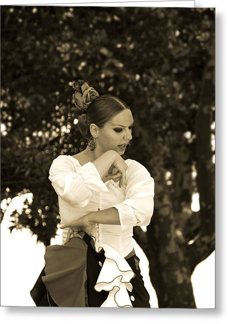 Duende Greeting Cards - Flamenco dance Greeting Card by Perry Van Munster