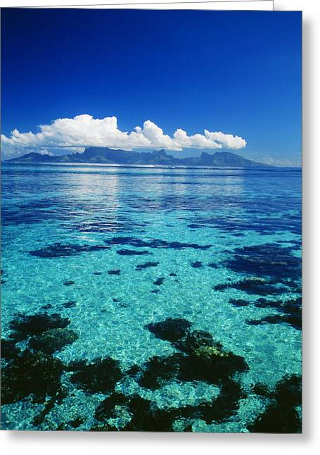 Reef Photos Greeting Cards - French Polynesia, Moorea Greeting Card by Dana Edmunds - Printscapes