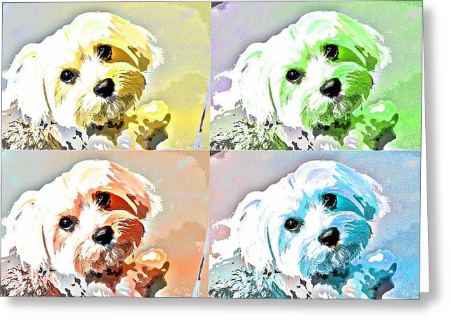Toy Dog Greeting Cards - Funky Maize Greeting Card by Fraida Gutovich