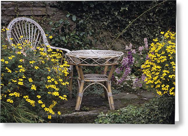 Biden Greeting Cards - Garden Furniture Greeting Card by Archie Young