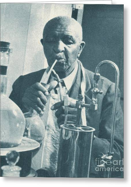 George W. Carver Greeting Cards - George W. Carver, African-american Greeting Card by Science Source