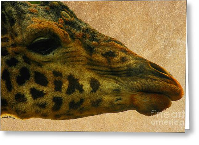 Print Face Greeting Cards - Giraffe Greeting Card by Cheryl Young