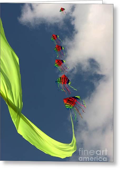 Kites Greeting Cards - High Hopes Greeting Card by Angel  Tarantella