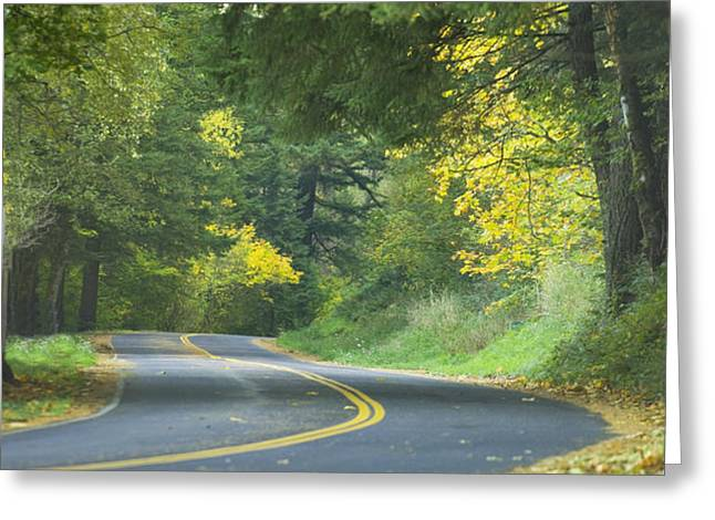 Historic Columbia River Highway Greeting Card by Alan Majchrowicz