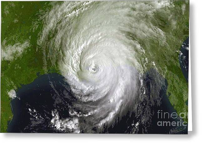 Noaa Greeting Cards - Hurricane Katrina Greeting Card by Science Source
