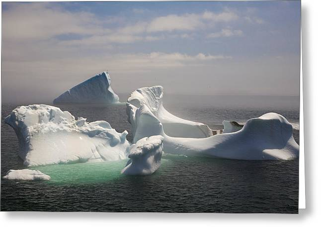 Jul08 Greeting Cards - Icebergs In Fog, Quirpon Island Greeting Card by John Sylvester