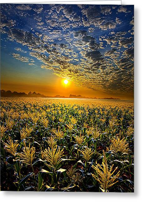Geographic Greeting Cards - In Time Greeting Card by Phil Koch