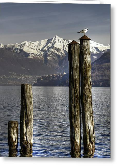 Piedmont Greeting Cards - Lake Maggiore Greeting Card by Joana Kruse