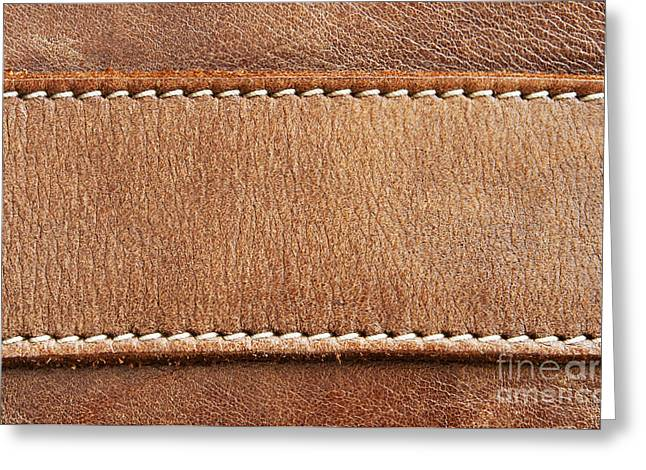 Abstracted Animal Art Greeting Cards - Leather with stitching Greeting Card by Blink Images