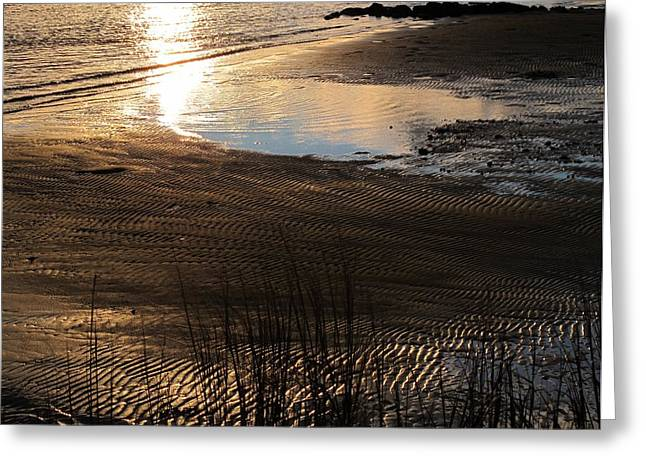Nature Pyrography Greeting Cards - Low Tide Greeting Card by Valia Bradshaw