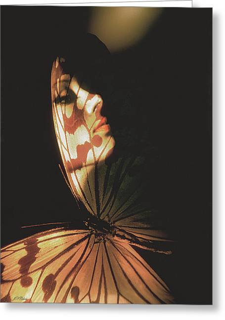 John Neville Cohen Greeting Cards - Madam Butterfly Card Greeting Card by John Neville Cohen