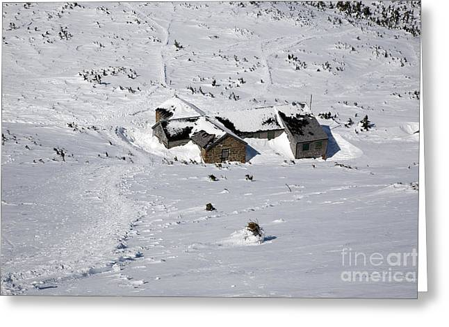 Madison Spring Hut- White Mountains New Hampshire Greeting Card by Erin Paul Donovan
