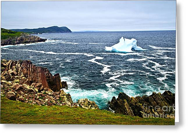 Iceberg Greeting Cards - Melting iceberg Greeting Card by Elena Elisseeva