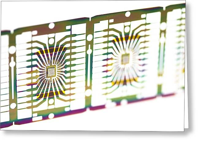 Microprocessor Greeting Cards - Microprocessor Chips Greeting Card by Pasieka