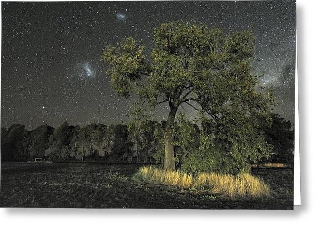 Moonlit Night Greeting Cards - Milky Way Over Parkes Observatory Greeting Card by Alex Cherney, Terrastro.com