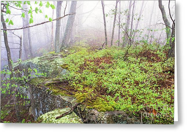 Allegheny Greeting Cards - Misty Spring Morning Greeting Card by Thomas R Fletcher