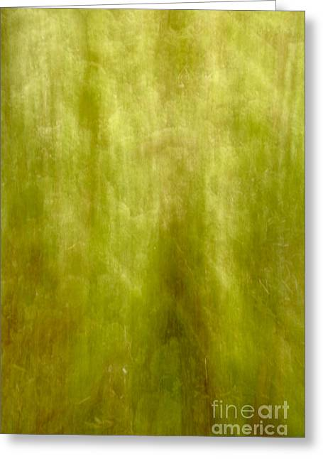 Blured Greeting Cards - Nature abstract Greeting Card by Gaspar Avila