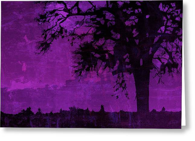Digital Media Greeting Cards - Nightfall Greeting Card by Bonnie Bruno