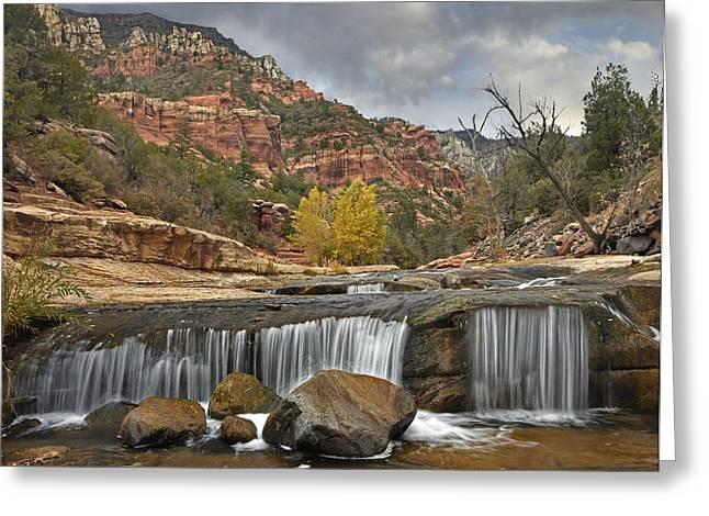 Oak Creek Greeting Cards - Oak Creek In Slide Rock State Park Greeting Card by Tim Fitzharris