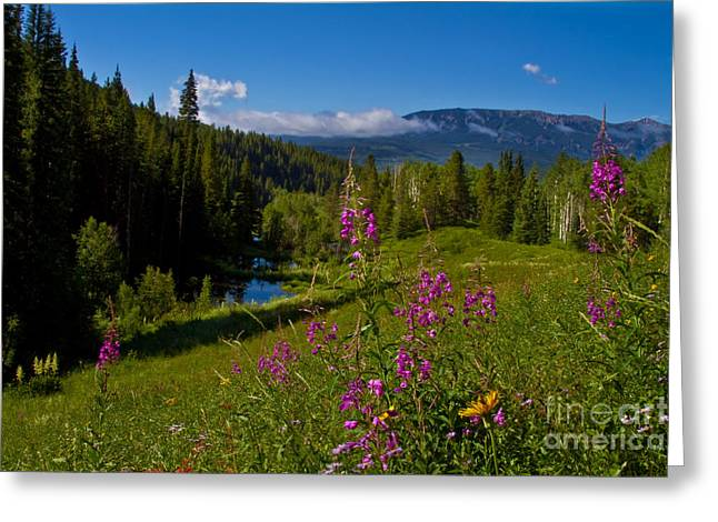 Colorful Cloud Formations Greeting Cards - Ohio Creek Valley Colorado Greeting Card by Crystal Garner