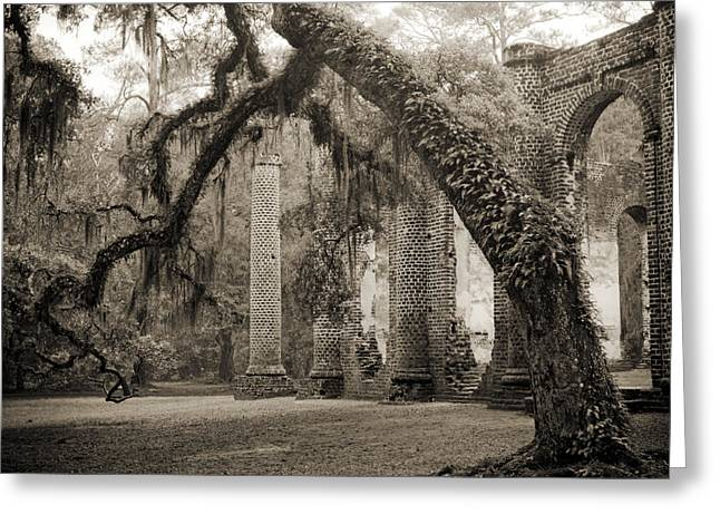 Moss Greeting Cards - Old Sheldon Church Ruins Greeting Card by Dustin K Ryan