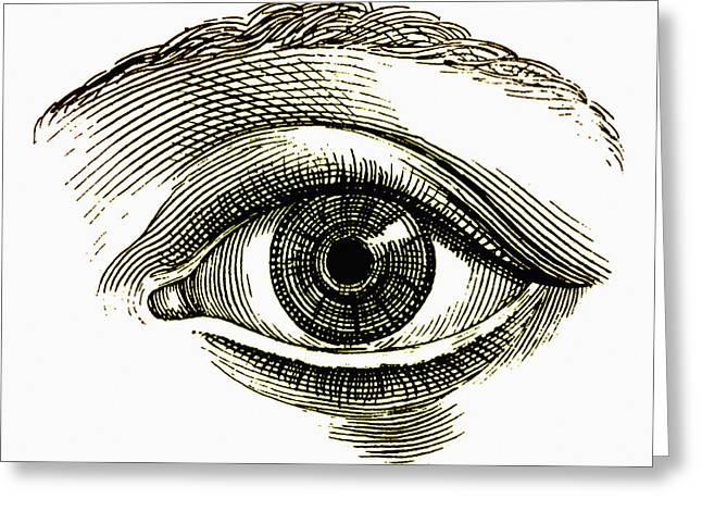 Open Eye Greeting Card by Mehau Kulyk