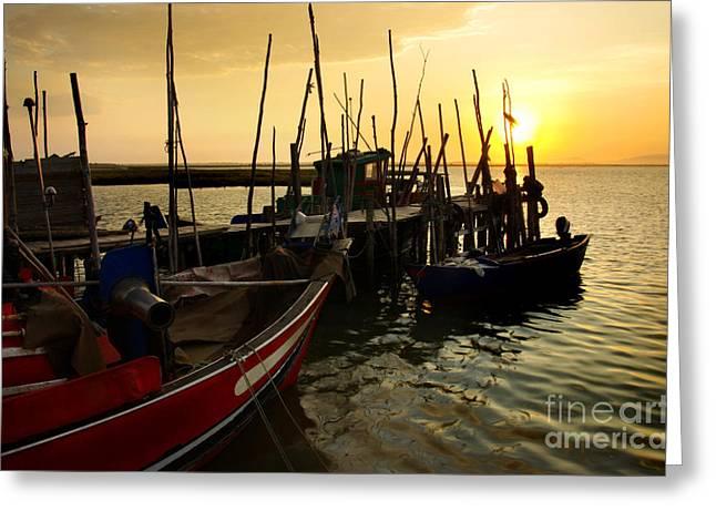 Palaffite Port Greeting Card by Carlos Caetano