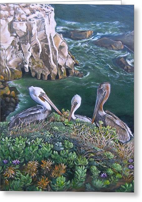 Pelican Point Greeting Card by Lorna Saiki