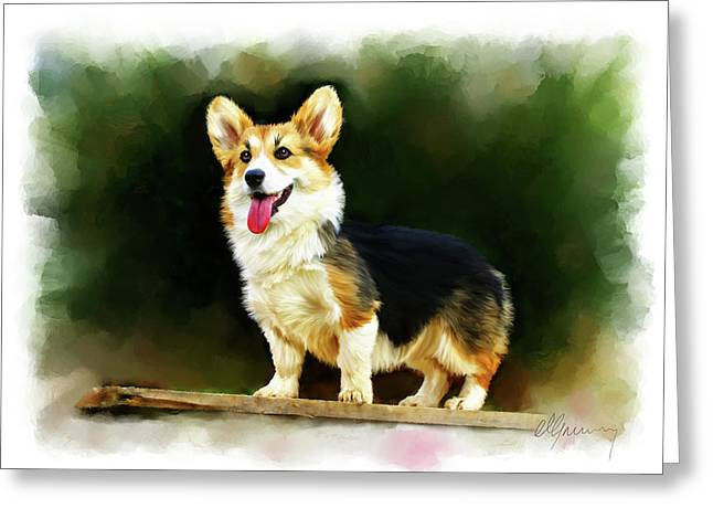 Haugesund Greeting Cards - Pet Dog Portrait Greeting Card by Michael Greenaway