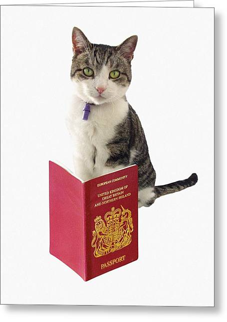 Concept Photographs Greeting Cards - Pet Passport Greeting Card by Victor De Schwanberg