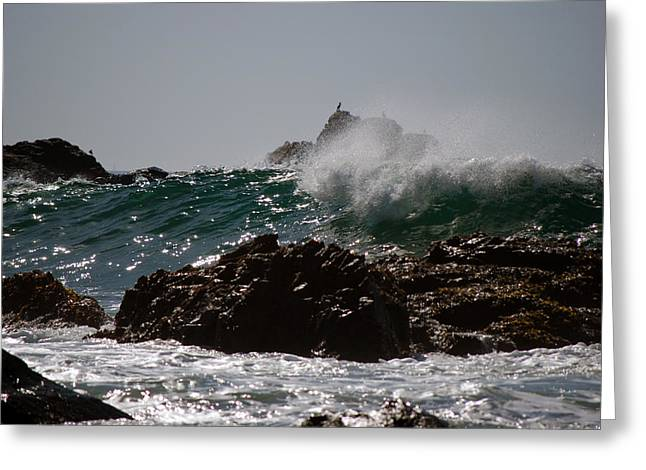 Pfeiffer Beach Greeting Cards - Pfeiffer Beach Greeting Card by Harvey Barrison
