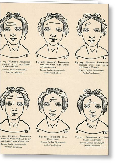 Forehead Greeting Cards - Physiognomy Greeting Card by Science Source